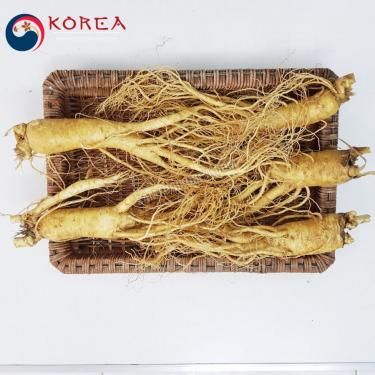 Sâm tươi Hàn Quốc 5 củ 1 kg